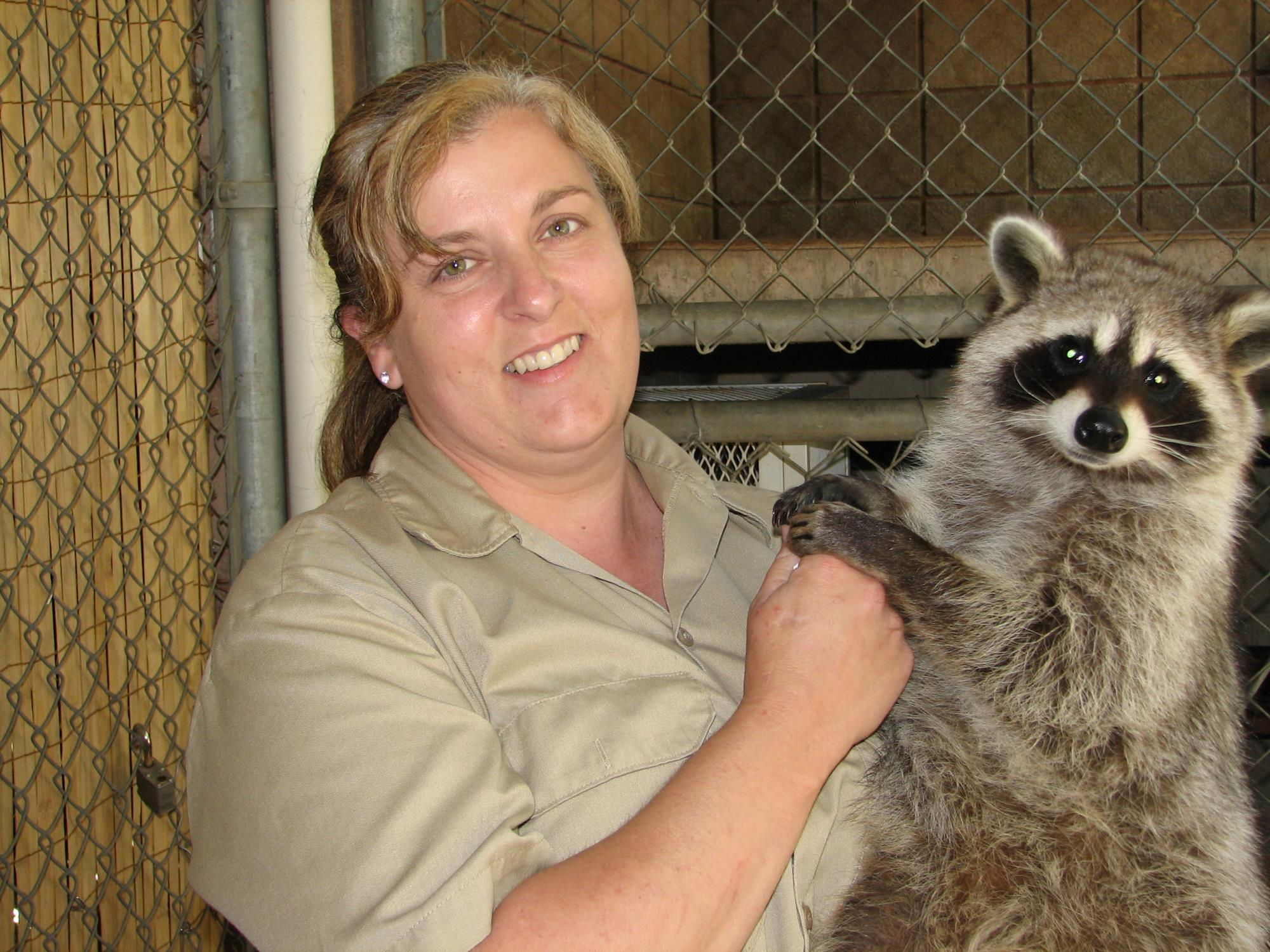 Zookeeper with Racoon
